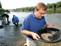 Goldschürfen im Rhein