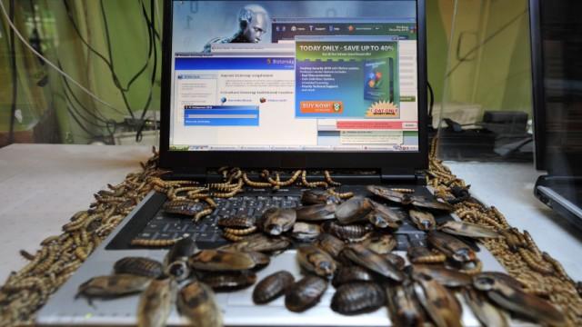 Cyberkrieg Kriegsführung im Cyberspace