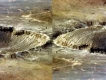 Krater Optik Wahrnehmung