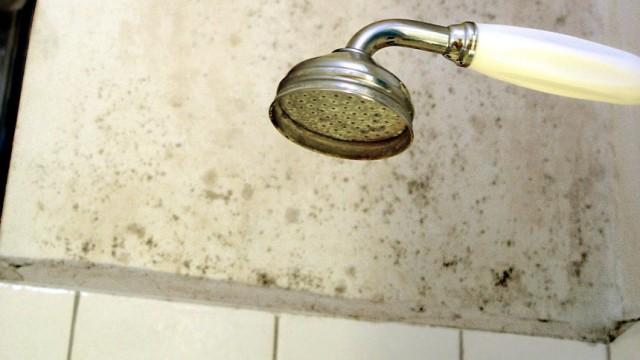 Mietrecht Badsanierung schimmel und andere mängel was muss der vermieter tun geld