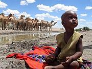 Hunger, Kenia, dpa