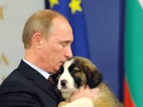Putin sucht Namen für Welpen