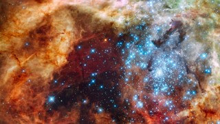 "´Hubble"" erspäht Sternengefunkel im Nebel"