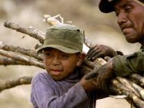 Reform des Zucker-Marktes - Zuckerrohranbau in Guatemala