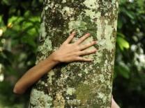 Öko/Greenpeace/Baum/umarmen/Naturliebhaber
