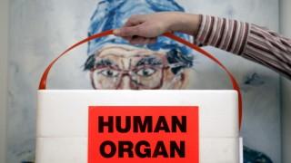 Patienten warten lange auf Organspenden