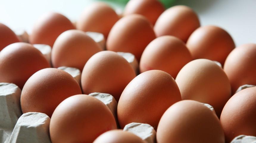 Dioxin in Eiern nachgewiesen