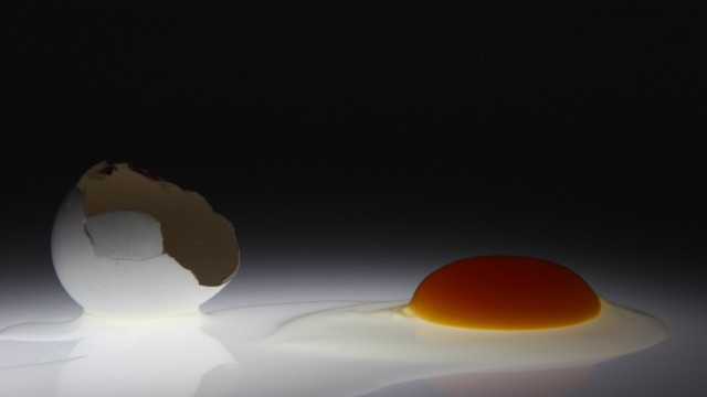 A picture illustration of an empty chicken egg shell next to the raw egg white and yolk taken in Berlin