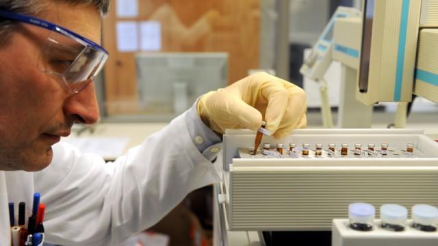 Eier werden auf Dioxin-Belastung überprüft