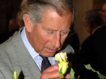 Prinz Charles schnuppert an Rose