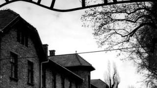 Himmlers KZ-Bordelle