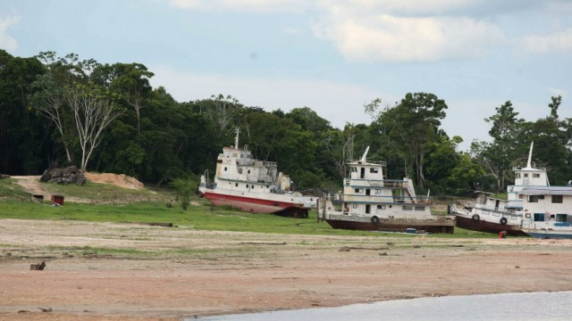 Dürre im Amazonas-Gebiet