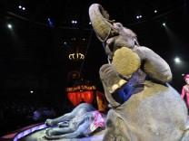 Elefanten im Circus Krone, 2010