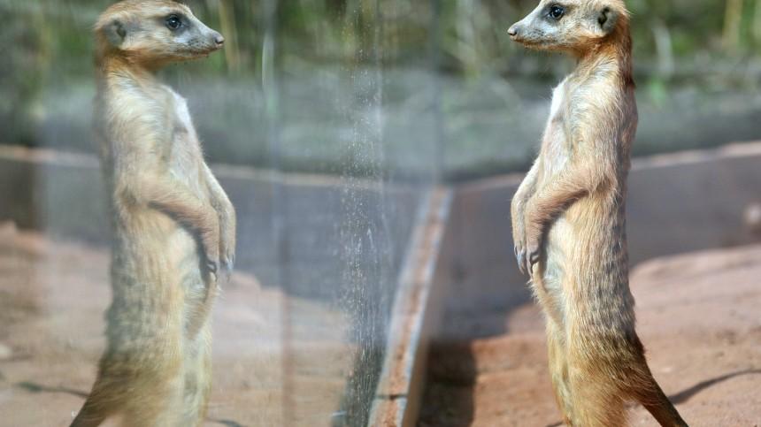 Jahresinventur im Thüringer Zoopark Erfurt