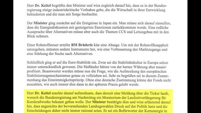 BDI Dokument Brüderle