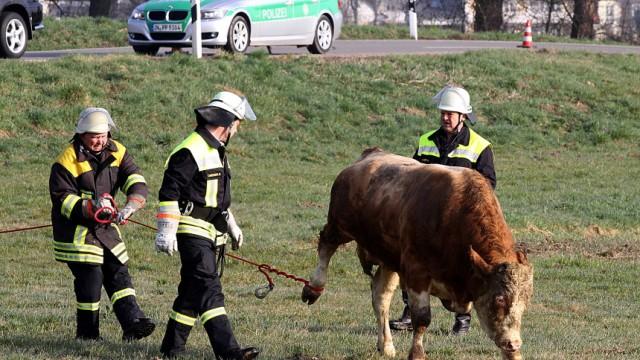 Polizei Unfall bei Petershausen