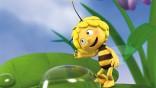 """Biene Maja ZDF: """"Biene Maja"""" in 3D"""