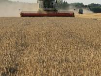 German Agricultural Harvest