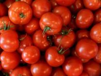 Gemüse aus dem Knoblauchsland Nürnberg
