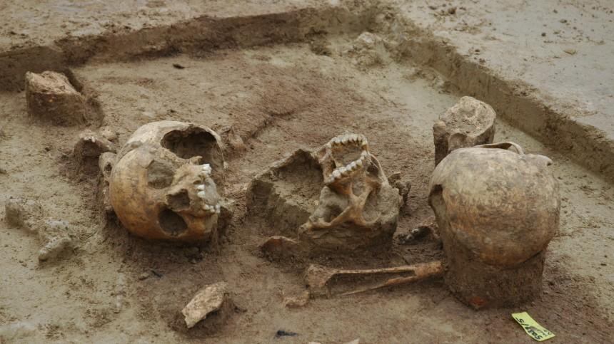 Ausgrabungen in Herxheim/Pfalz, Bandkeramik-Kultur