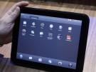 Palm_Tablet_CAPS116