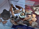 peter.bauersachs_museum-ausstellung-fos-bos_20110526090001