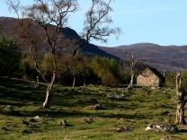 Die Einsamkeit der Hochheide: Unterwegs in den Highlands
