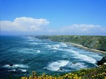 Im Rhythmus der Wellen: In Portugal leben Surfer ihren Traum