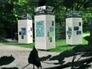 peter.bauersachs_stadtpark-ausstellung-für-6.7._20110711083001