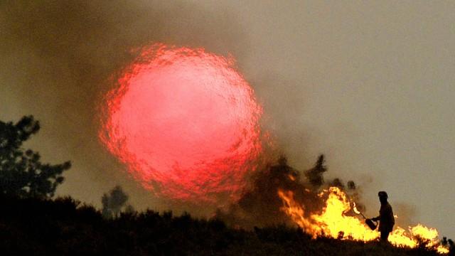 Waldbrände Klimawandel