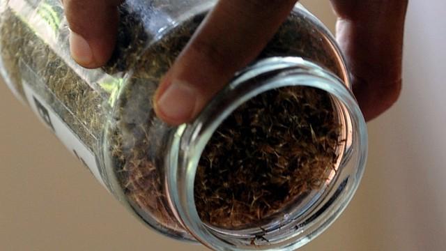 Ernährung Gerichtsurteil zu Stevia-Pflanze