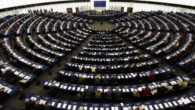 Kinderdienst: Was machen die Politiker im Europaparlament?