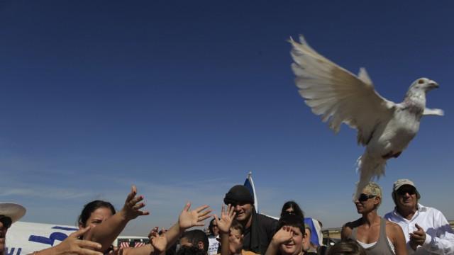 Nahost-Konflikt Freilassung von Gilad Schalit und die Folgen