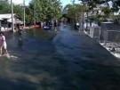 Durchhalten gegen die Flut (Vorschaubild)