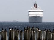 """Schweinegrippe: Kreuzfahrt mit der """"Ocean Dream"""" muss abgebrochen werden, dpa"""