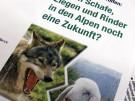 Wolf, Oberbayern