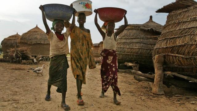 Hungersnot in Niger wegen Dürre und Heuschreckenplage, 2005