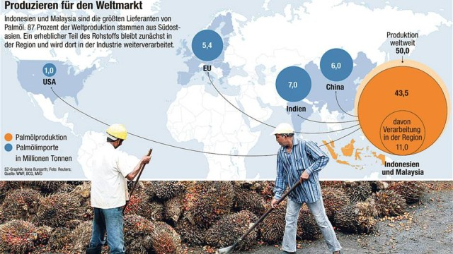 Palmöl Handelskonzerne im Test