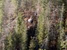 manfred.neubauer_feuer-brand-falkenberg-bergwald-sylvensteinstausee-(60)_2011112