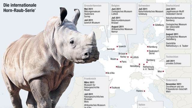 Rhinozeros Diebstahl Europa