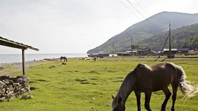 Altai-Gebirge