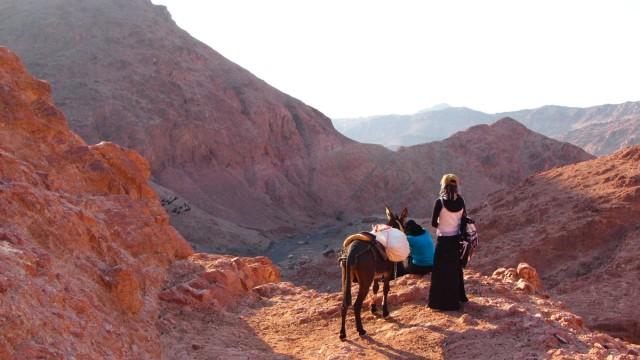 Jordanien Wadi Feynan