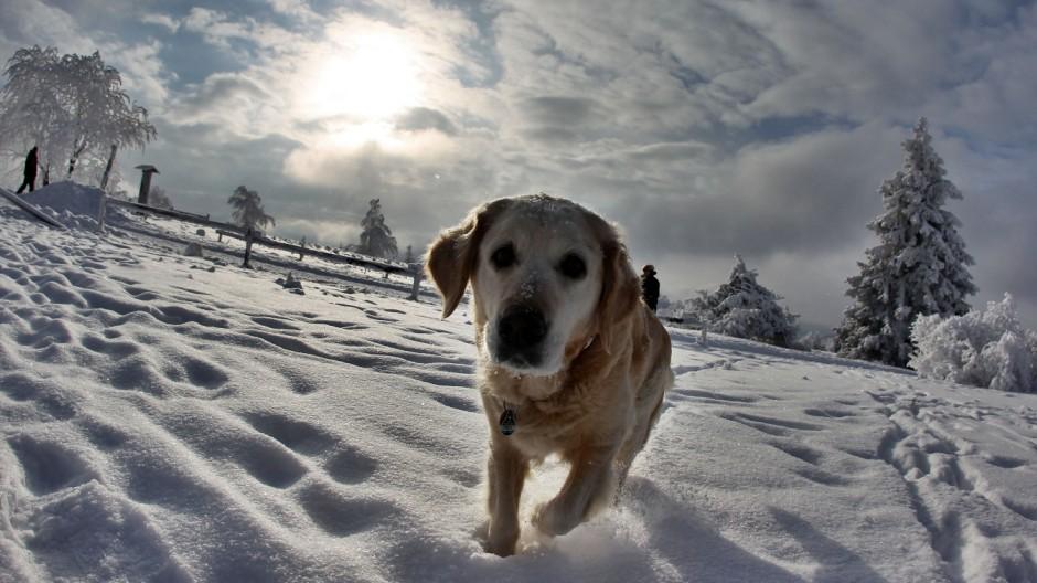 Schnee in Winterberg