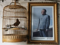 China Bans Bird Imports From Flu-Hit Countries