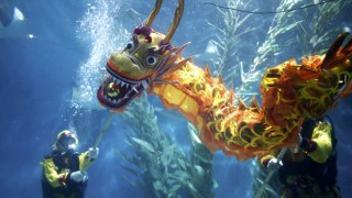 Divers perform a dragon dance during an event to celebrate the Chinese Lunar New Year at the Shanghai aquarium