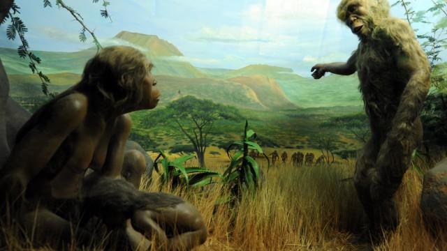 Evolution im Museum Mensch und Natur in München