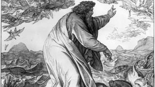 Vorstellung der Schöpfung (18. Jahrhundert)