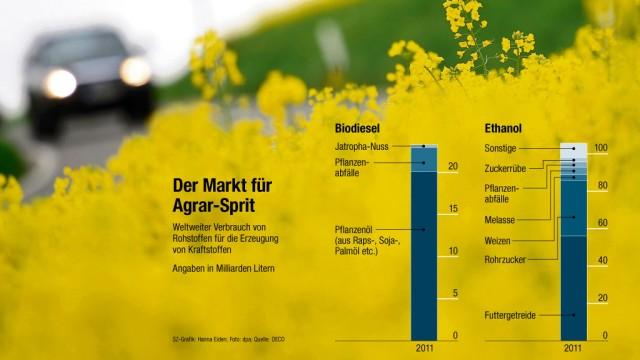 Bio-Kraftstoff Abkehr vom Biosprit