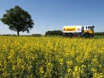 Studie: Zweifel am Klima-Nutzen von Biosprit