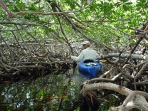 Tiere und süße Köstlichkeiten am Ende von Amerika Florida Keys